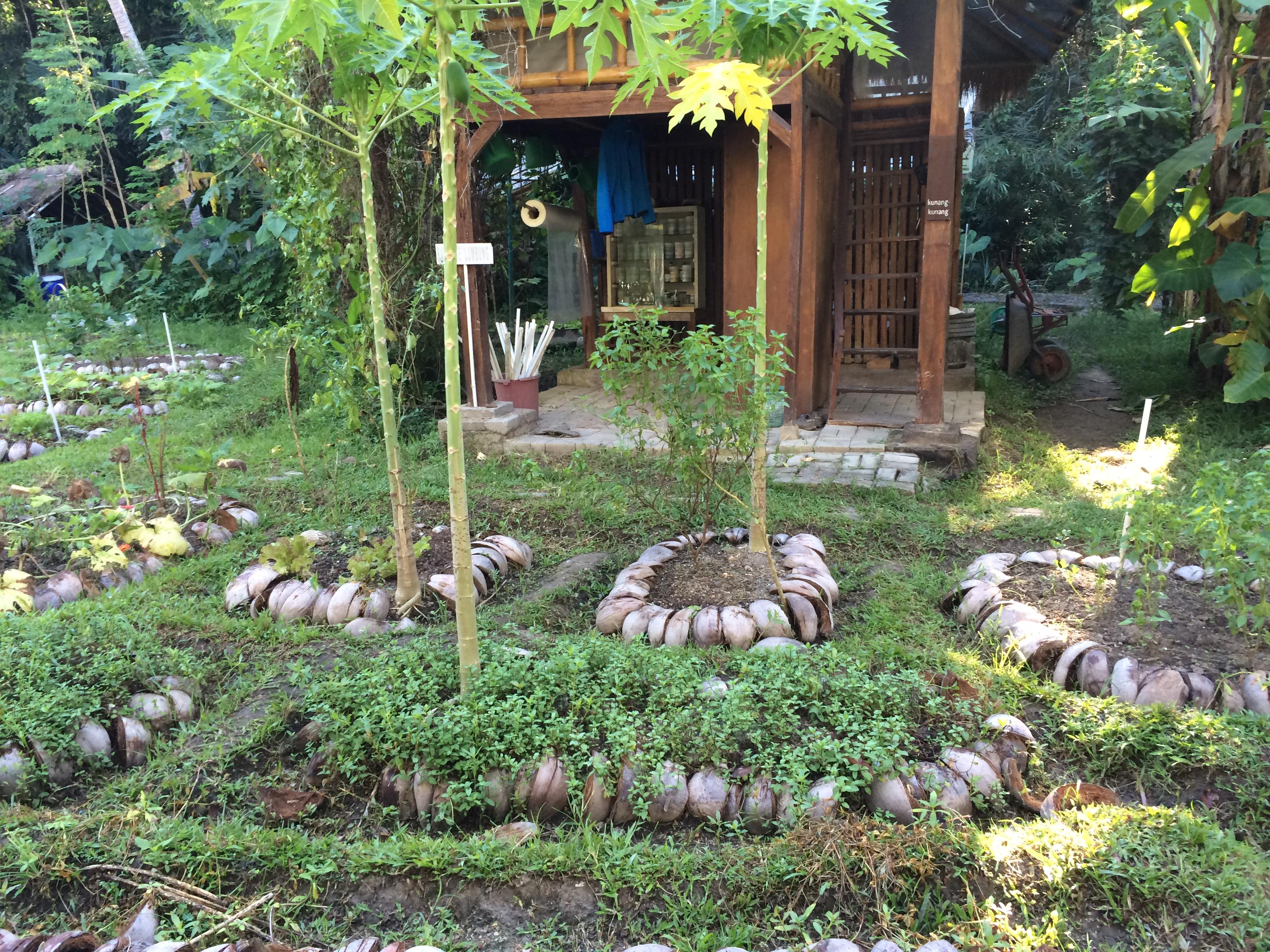 Permakultur die natur zeigt uns wie 39 s geht youbeee magazin for Gartenplatz anlegen