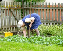 Oma bei der Gartenarbeit, Fünf Tipps für eine achtsame und gelungene Gartenarbeit