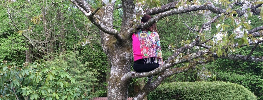 kleine Auszeit im Kirschbaum, Katrins Blog