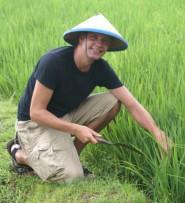 Reisfeld, Asienreise, Thailand, alleine Reisen