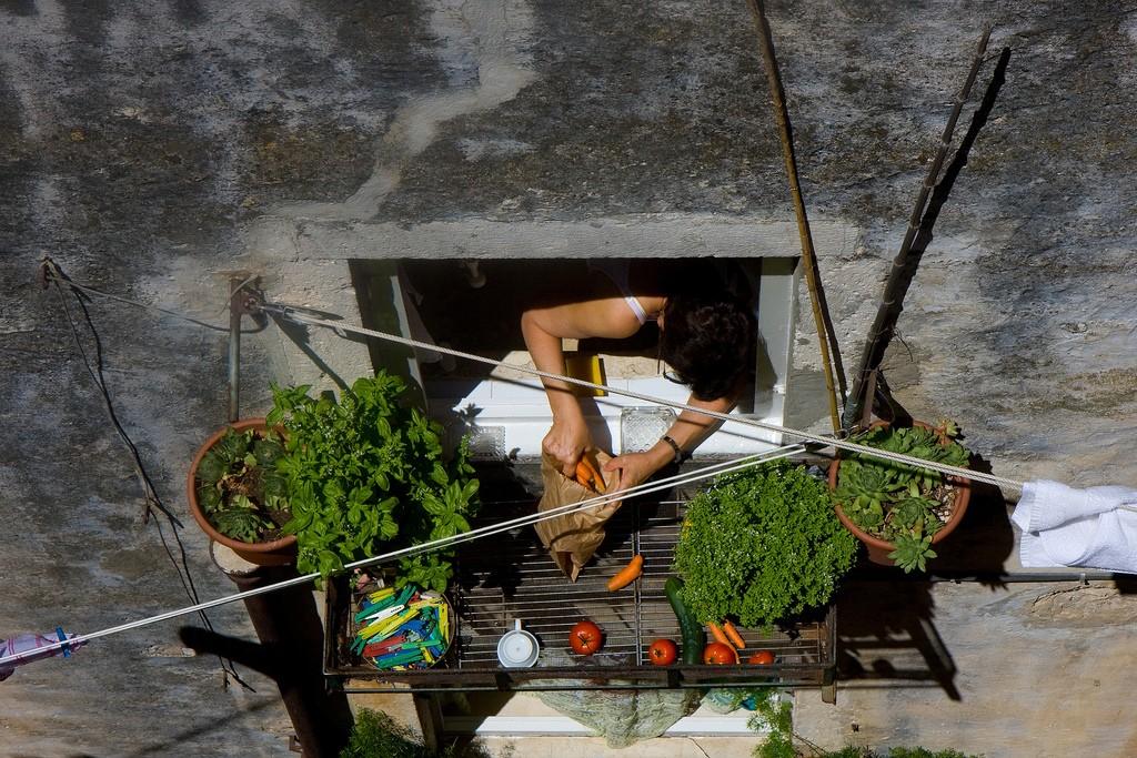 Balkon Gemüse, Gartenarbeit leicht gemacht 5 Tipps