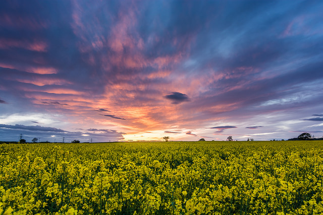 Sonnenuntergang-Chris Combe-Yorkshire-England-CC BY